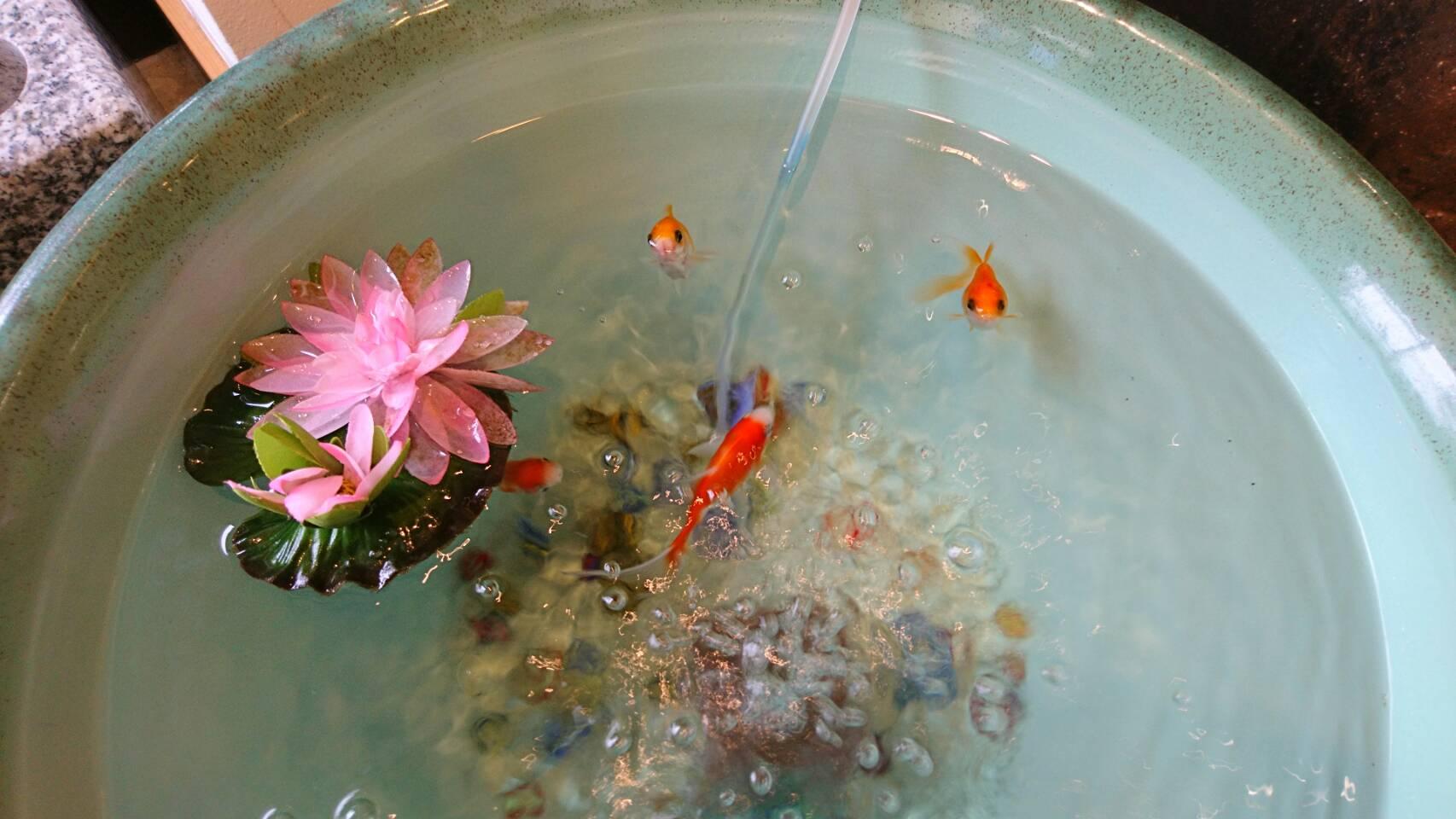 ふくば 福島 仏壇 写真ギャラリー画像23